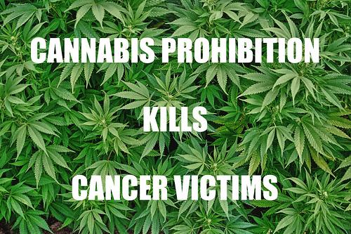 cannabisprohibitionkillvictims